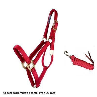 Cabezada nylon Hamilton + ramal Pro 4,20 mts